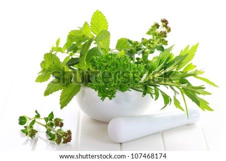 Fresh herbs from garden in the mortar - stock photo