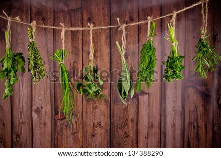 Fresh herbs hanging on wooden background - stock photo