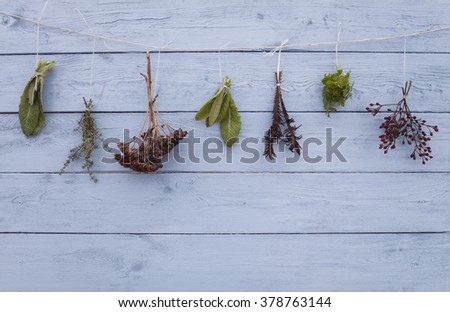 Fresh herbs hanging over wooden background blue color