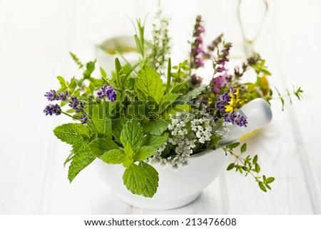 Fresh herbs in mortar - stock photo