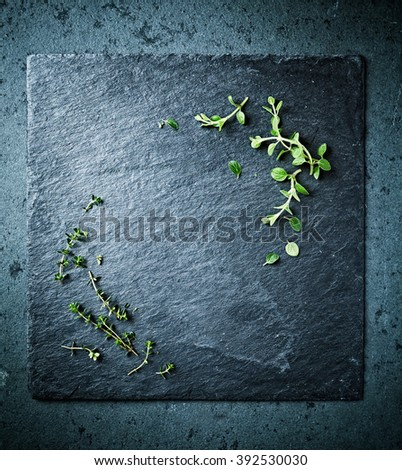 Fresh herbs on a black slate  - stock photo