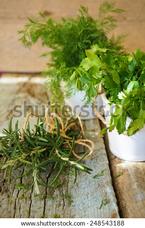 Fresh herbs on wooden background. Dill, parsley, rosemary - stock photo