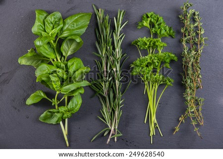 Fresh herbs preparation for drying on black background - stock photo