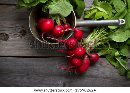 Fresh home grown radishes on old wooden boards - stock photo