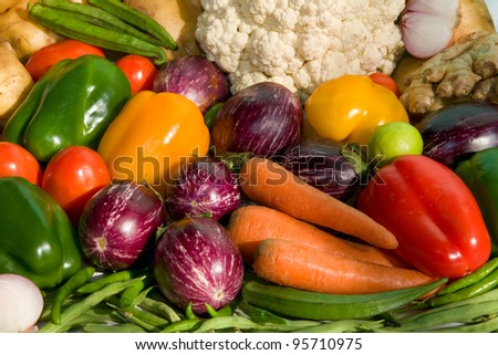 fresh homegrown vegetables on  table in garden  at summer day - stock photo