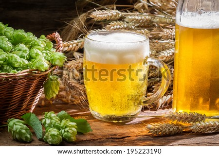 Fresh homemade beer made of hops - stock photo
