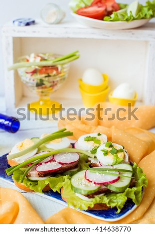 fresh homemade meat and vegetables tasty sandwiches - stock photo