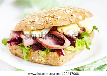 Fresh Homemade Turkey Sandwich with cranberry sauce - stock photo