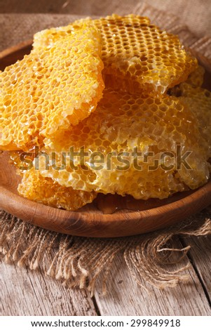 Fresh honeycombs on a wooden plate on the table close-up. Vertical