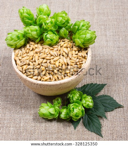 Fresh hops and barley grain on canvas background. - stock photo