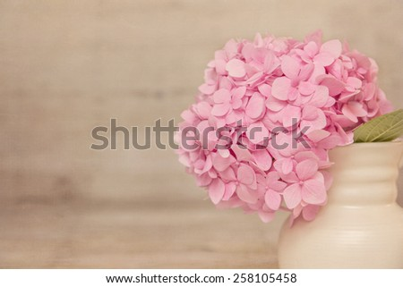 Fresh hydrangea on a textured background with retro vintage colors with copy space - stock photo