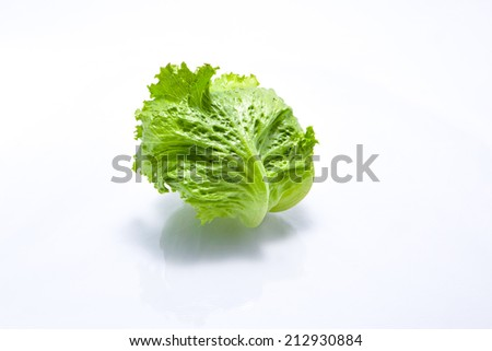 fresh iceberg lettuce salad isolated on white - stock photo