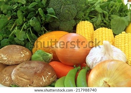 Fresh Ingredients Produce for Cooking Meals Set - stock photo