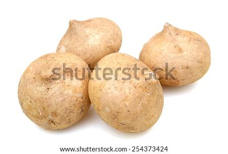 fresh jicama on white background  - stock photo