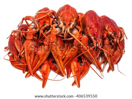 Fresh juicy boiled crawfish closeup. seafood, healthy food. - stock photo