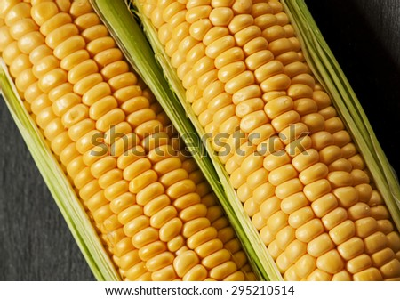 Fresh juicy organic corn, close up, selective focus - stock photo