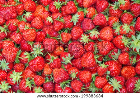 Fresh juicy strawberries - filled frame - stock photo