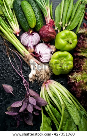 Fresh juicy vegetables such as  basil,  purple onion, young peas, peppers, cucumbers and spinach on black background. Vegan concept. Vegetable background - stock photo