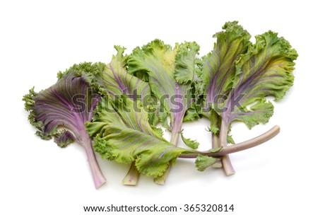 fresh kale leaves isolated on white  - stock photo