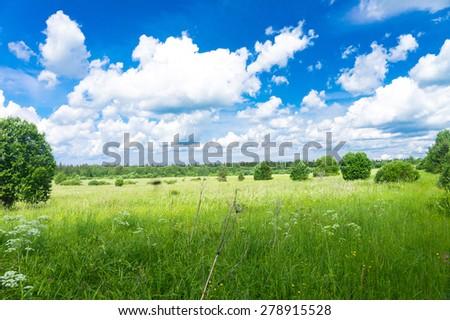 Fresh Landscape Vibrant Springtime  - stock photo