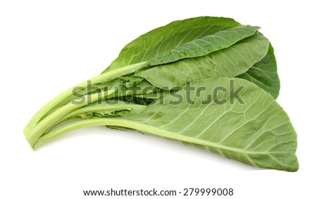 fresh leaves of collards isolated on white  - stock photo