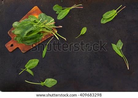 Fresh leaves of sorrel on cutting board on a dark metallic background. blackout photo - stock photo