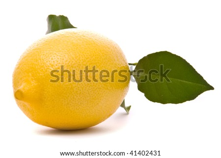Fresh lemon isolated on a studio white background.