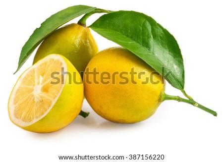 Fresh lemon with half isolated on white background - stock photo