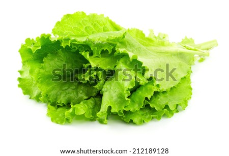 Fresh lettuce isolated on white background - stock photo