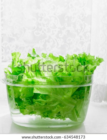 Fresh lettuce leaves soaked in transparent plastic bowl to remove pesticides residues, prepare for cooking. Healthy organic vegetable food, diet concept