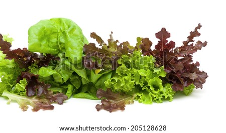 fresh lettuce of different types on a white background close-up. horizontal photo. - stock photo