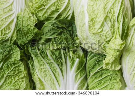 fresh lettuce salad closeup - crisp vegetable, fresh food macro - stock photo