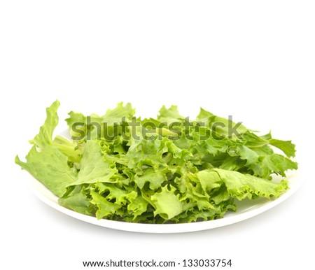 fresh lettuce salad on white - stock photo