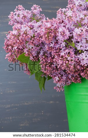 Fresh lilac flowers in the green bucket against blue painted background.