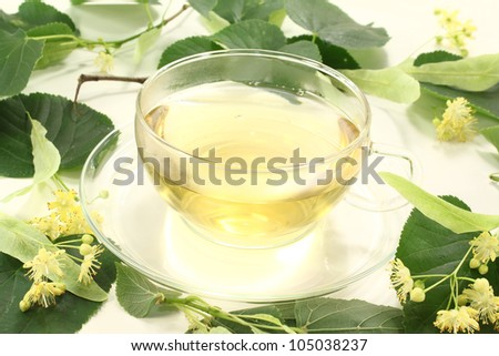 fresh linden blossom tea with linden flowers and leaves