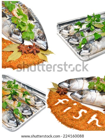 Fresh mackerel fish with parsleyand spices isolated on white. Collage - stock photo