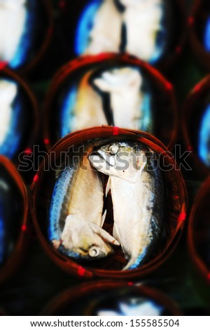 Fresh mackerel in basket