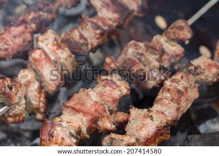 Fresh meat shish kebab (shashlik) prepared on a grill.