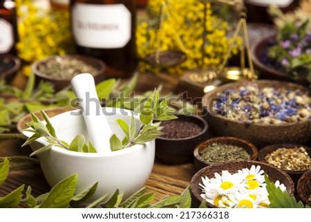 Fresh medicinal herbs on wooden   - stock photo
