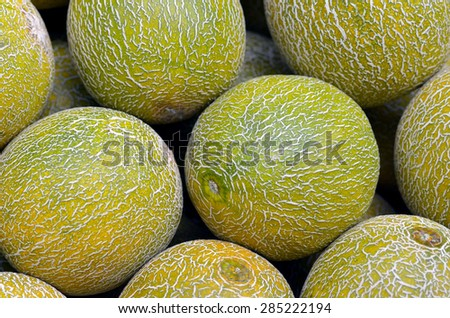 Fresh melons on display in food market in Tel Aviv, Israel.Food background and texture - stock photo