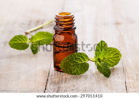 fresh mint and mint oil on the wooden board - stock photo
