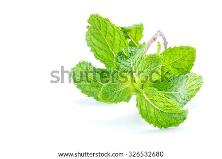 Fresh mint close up on white background, concept healthcare - stock photo