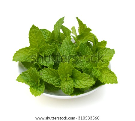 Fresh mint herb leaves isolated in plate on white background cutout - stock photo