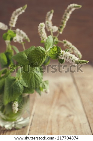Fresh mint leaves in a glass cup on wooden background