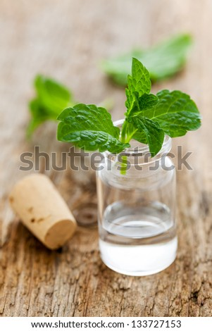 fresh mint oil in a bottle
