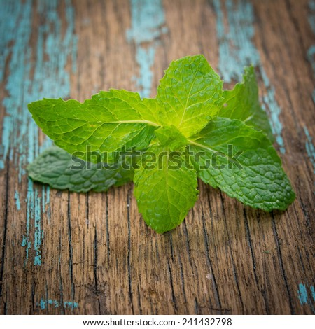 Fresh mint on rustic wooden background  - stock photo