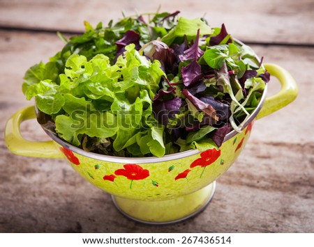 Fresh mixed green salad in a bowl close up - stock photo
