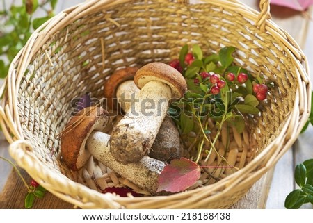 Fresh mushrooms and cranberry in basket - stock photo