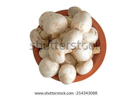 Fresh  mushrooms in a round plate Isolated on white - stock photo