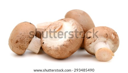 fresh mushrooms isolated on white  - stock photo